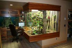 I would love this office space! - I would love this office space! Reptile Habitat, Reptile Room, Reptile Cage, Animal Room, Animal House, Vivarium, Paludarium, Glass Aquarium, Aquarium Design