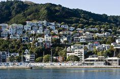 Houses on Mt Victoria wellington nz New Zealand North, New Zealand Travel, Wellington New Zealand, Pacific City, Hillside House, Best Cities, British Isles, Capital City, Australia Travel