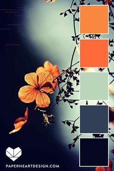Color Palette: Fantastic Florals — Paper Heart Design Source by sillismarti Orange Color Palettes, Color Schemes Colour Palettes, Colour Pallette, Color Combos, Orange Palette, Orange Paint Colors, Bedroom Color Palettes, Fall Color Schemes, Orange Color Schemes