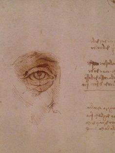 'Leonardo 1452 – 1519' at Milan's Palazzo Reale, an exhibition dedicated to the mind of Leonardo da Vinci. Exhibition website : http://www.skiragrandimostre.it/leonardo/ Da Vinci Sketches, Da Vinci Drawings, Drawing Sketches, Italian Renaissance, Renaissance Art, Michelangelo, Leonardo Da Vinci Portrait, Drawing Studies, Old Master