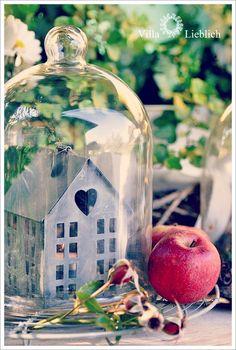 * Villa Lieblich *: 09/01/2012 - 10/01/2012