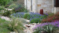 Love....for deer resistant Texas garden