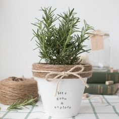 Make this adorable terracotta pot with paint, twine, and stamps.