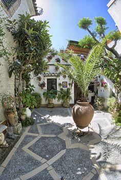 Patio de la calle Aceite, 8.- A pesar de ser novel en la participación en el concurso popular de patios cordobeses obtuvo, el primer año que se presentó, el Premio al Uso Artístico del Agua en la modalidad de Arquitectura Moderna.