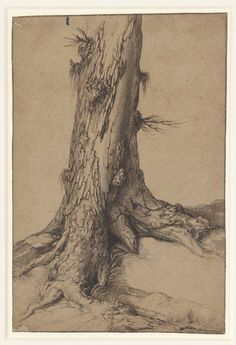 Study of the Trunk of an Old Tree Jacques de Gheyn II c 16001610 Museum Boijmans Van Beuningen Tree Trunk Drawing, Tree Drawings Pencil, Tree Trunk Painting, Tree Sketches, Drawing Sketches, Art Drawings, Drawing Ideas, Fantasy Angel, Tree Study