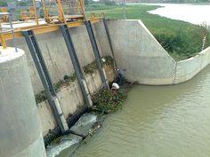 Eliminación de Malezas en la Rejilla de Bocatoma del Canal Norte Sullana