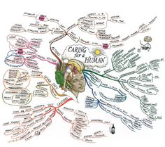 Caring for a Human Mind Map created by Tony Buzan. The Mind Map breaks down attitudes and actions, dietary and nutritional and exercise, including ways and methods of caring for the body both within and without. Mind Map Art, Mind Maps, Mind Body Spirit, Thats The Way, Nursing Students, Emotional Intelligence, Your Brain, Physiology, Art Therapy