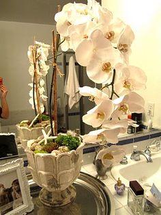 DIY Orchid Arrangement