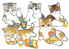 Cute Animal Drawings, Animal Sketches, Sand Cat, Cute Cats And Kittens, Furry Art, Cat Art, Pugs, Pikachu, Cute Animals