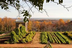 autumn garden, Monticello... my hubby's great great grandfather was brought from italy by thomas jefferson to manage his vineyard at monticello