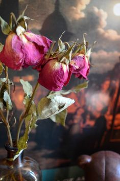 Acquiring the Taste: How to: Dry Flowers (and what to do with them)