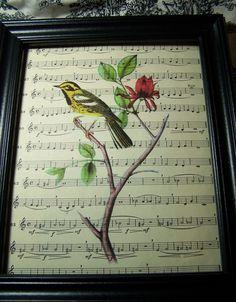 Finch, Yellow Finch, Flower, Sheet Music, Bird, Song Bird, Steampunk, Collage