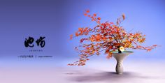 Photo Gallery | IKENOBO ORIGIN OF IKEBANA