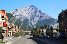 The Coolest Small Town in Canada Banff Alberta Banff National Park, National Parks, Banff Hotels, Calgary International Airport, Bear Habitat, Sulphur Mountain, Fairmont Banff, Banff Alberta