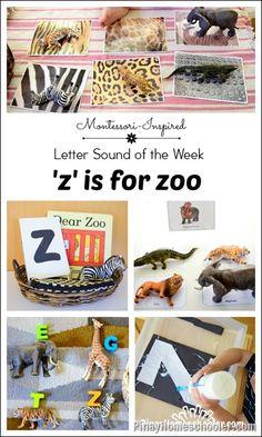 Letter Z: Zoo Animal Activities