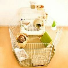 Cage for rabbit