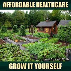 FB Grow Food, Not Lawns