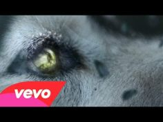 """""""David Guetta - She Wolf (Falling To Pieces) ft. Sia"""" An amazing song that paints a vivid picture on it's own. With the video it is EPIC!"""