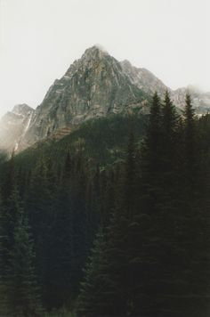 Isolate on @We Heart It.com - http://whrt.it/Py44Qu