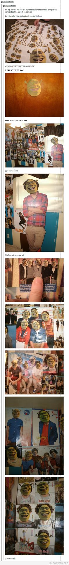 One Di-Shrek-tion. lol this is just perfect because im a shrek fan but not a 1D fan!!!