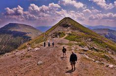 """Vârful Bucura (cunoscut și sub denumirea de Bucura Dumbrava sau Vârful Ocolit) este al doilea vârf ca înălțime din masivul Bucegi cu 2503 m. El se găsește la mică distanță de vârful Omu și Cabana Omu. Deși este printre puținele vârfuri din România ce depașesc înălțimea de 2500 m, este mai puțin cunoscut, """"eclipsat"""" probabil de mult mai celebrul său vecin, vârful Omu."""