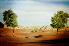 """""""الطبيعة"""" للمصورة منار الحوسني لدقة افضل شاهد الصورة على الموقع http://www.ph-wall.com/photo.php?id=499 …  #حائط #صور #طبيعة"""