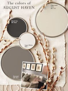 Adair house -- exterior paint The 4 paint colors featured in the August Haven showroom. These four play nicely with warm and cool tones. The white is crisp and colorless, taking on a slight color of the furnishings while providing brightness.