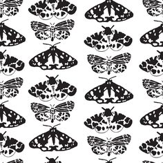 butterfly pattern by Isabela Pinheiro