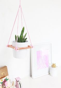 Hanging planters give instant cool to your dorm room.