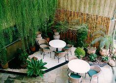 Crie um jardim de inverno! | Dicas de Decoração | Blog de Decoração LojasKD