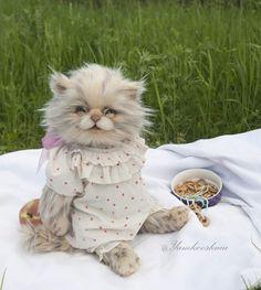 Kitty Elina By Marina Yamkovskaia - Bear Pile