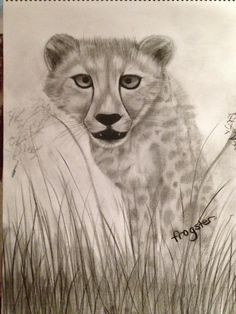 'Ready to pounce' charcoal art by 'frogster'