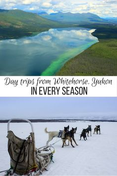 From dog sledding and horseback riding to Northern Lights viewing and glacier flight seeing, here are the best day trips from Whitehorse, Yukon, Canada. Northern Lights Viewing, Northern Lights Trips, Western Canada, Canada North, Canada 150, Antique Christmas, Primitive Christmas, Country Christmas, Outdoor Christmas