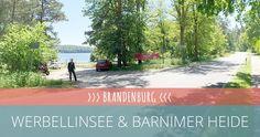 Motorradtour Brandenburg: Werbellinsee und Barnimer Heide - http://motoliebe.de/motorradtour-brandenburg-werbellinsee/ #MotoLiebe