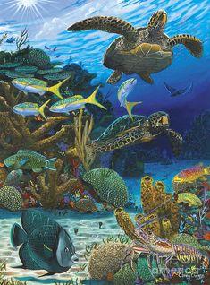 Cayman Turtles Painting  - Cayman Turtles Fine Art Print