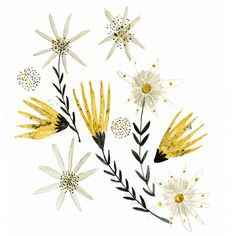 Art print Late Summer floral watercolor botanical illustration digital print - inmybackyard - #etsy