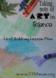 STEM Mom: Art in Nature-Leaf Rubbings