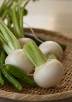 Japanese Fresh Vegetables: White Turnips (Kabu) and Sweet Green Pepper (Shishito)