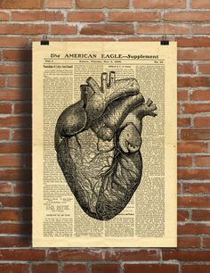 Human Heart Anatomy Science Medicine Vintage Printable Collage Old Newspaper A3 Wall Art Print 11x16 Home Decor - INSTANT DOWNLOAD HQ300dpi by ShabbyPrintable on Etsy