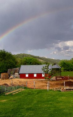 Springtime on the farm - if you haven't figured it out yet - The Farm is a very Mystical Place.
