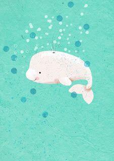 Baby Beluga Whale art Whale drawing Animal illustration