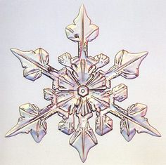 Three fold snowflake - Photo by Patricia Rasmussen Crystal Snowflakes, Crochet Snowflakes, Winter Time, Winter Snow, Snow Clouds, Snowflake Photos, I Love Snow, Ice Crystals, Winter Nail Designs