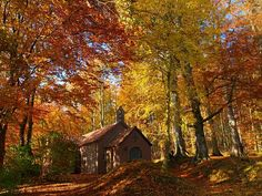 Secluded church in autumn