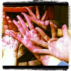 Manos al Vino Tinto #cosechame2012