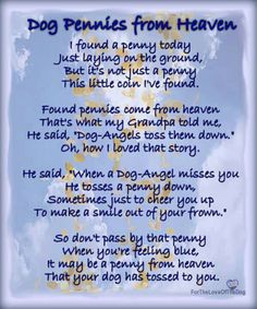 """Love this! Dog Pennies From Heaven A lovely canine adaptation of Charles Marshburn's """"Pennies from Heaven""""… What a touching and heartwarming thought. Makes you think of those found pennies in a whole different light, doesn't it? Dog Quotes, Animal Quotes, Dog Sayings, Dog Death Quotes, Animal Poems, Clever Sayings, Sweet Sayings, Souvenir Animal, Pet Poems"""