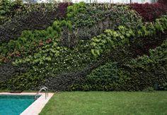 Jardim vertical: o verde cobre as paredes - Casa