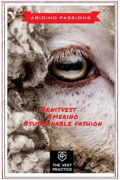 At The Vest Practice we love creating sustainable luxury knit vests for women of direction and purpose who align their purchasing with their values.    #knitvests #sweatervests #sustainablefashion Knit Vest, Sustainable Fashion, Vests, Purpose, Passion, Knitting, Luxury, Movie Posters, Women