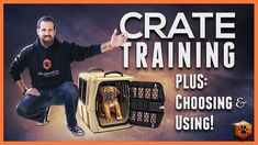Puppy potty training can be a difficult and frustrating experience. The process will require patience and consistent discipline to properly train your puppy. Puppies should begin potty training as soon as they are brought home. Puppy Training Schedule, Dog Training Videos, Training Your Puppy, Potty Training, Best Puppies, Puppy Play, Crate Training, Old Dogs, How To Train Your