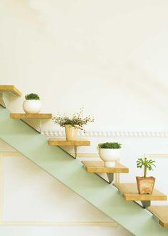 foto decorar con plantas1 726x1024 Ambientar la casa con plantas de interior