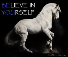 Be You Believe in Yourself Tony O Connor - Equine Art
